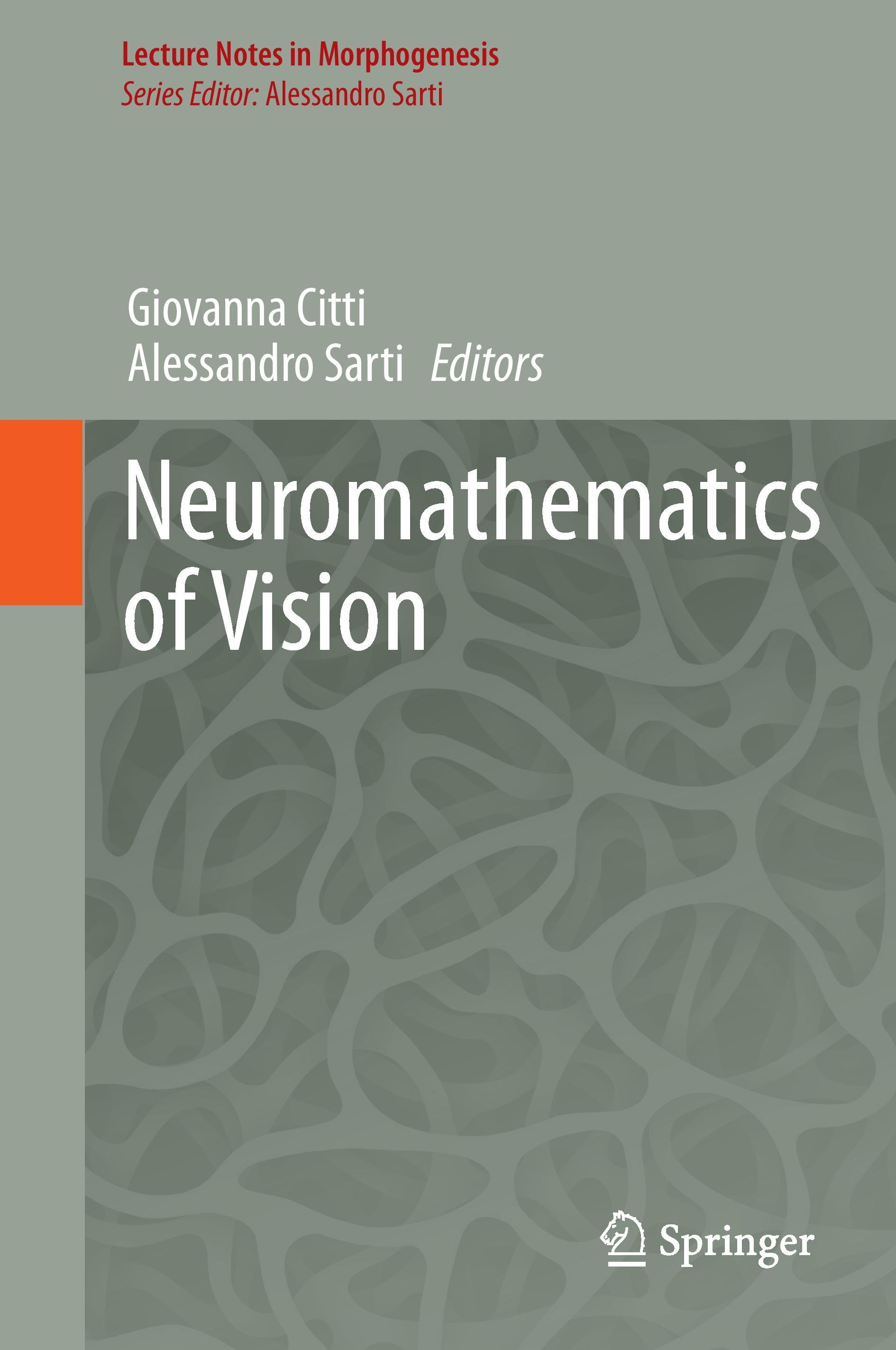 Neuromathematics of Vision  Lecture Notes in Morphogenesis