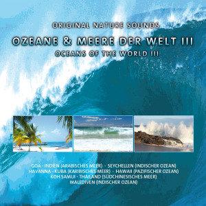 Various: Ozeane & Meere Der Welt III-Exotic Waves
