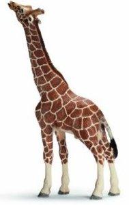 Schleich 14389 - Wild Life: Giraffenbulle