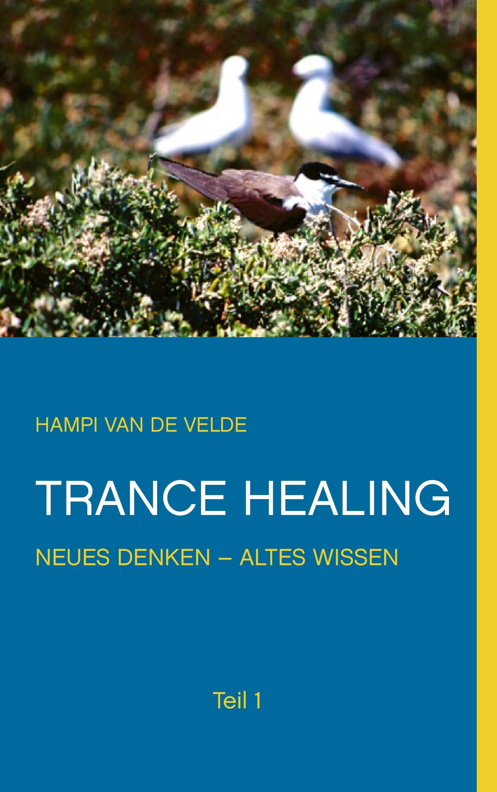 Trance Healing