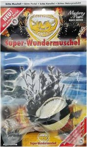 Corvus A101007 - Wundermuschel: Mystery Pearl