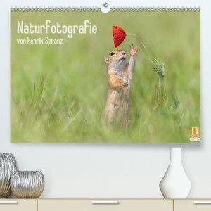 Naturfotografie (Premium, hochwertiger DIN A2 Wandkalender 2021,