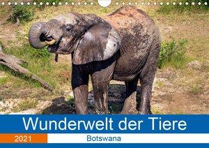 Wunderwelt der Tiere - Botswana (Wandkalender 2021 DIN A4 quer)