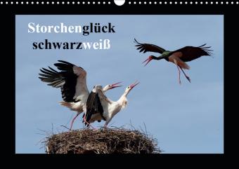 Storchenglück schwarzweiß (Wandkalender 2021 DIN A3 quer)