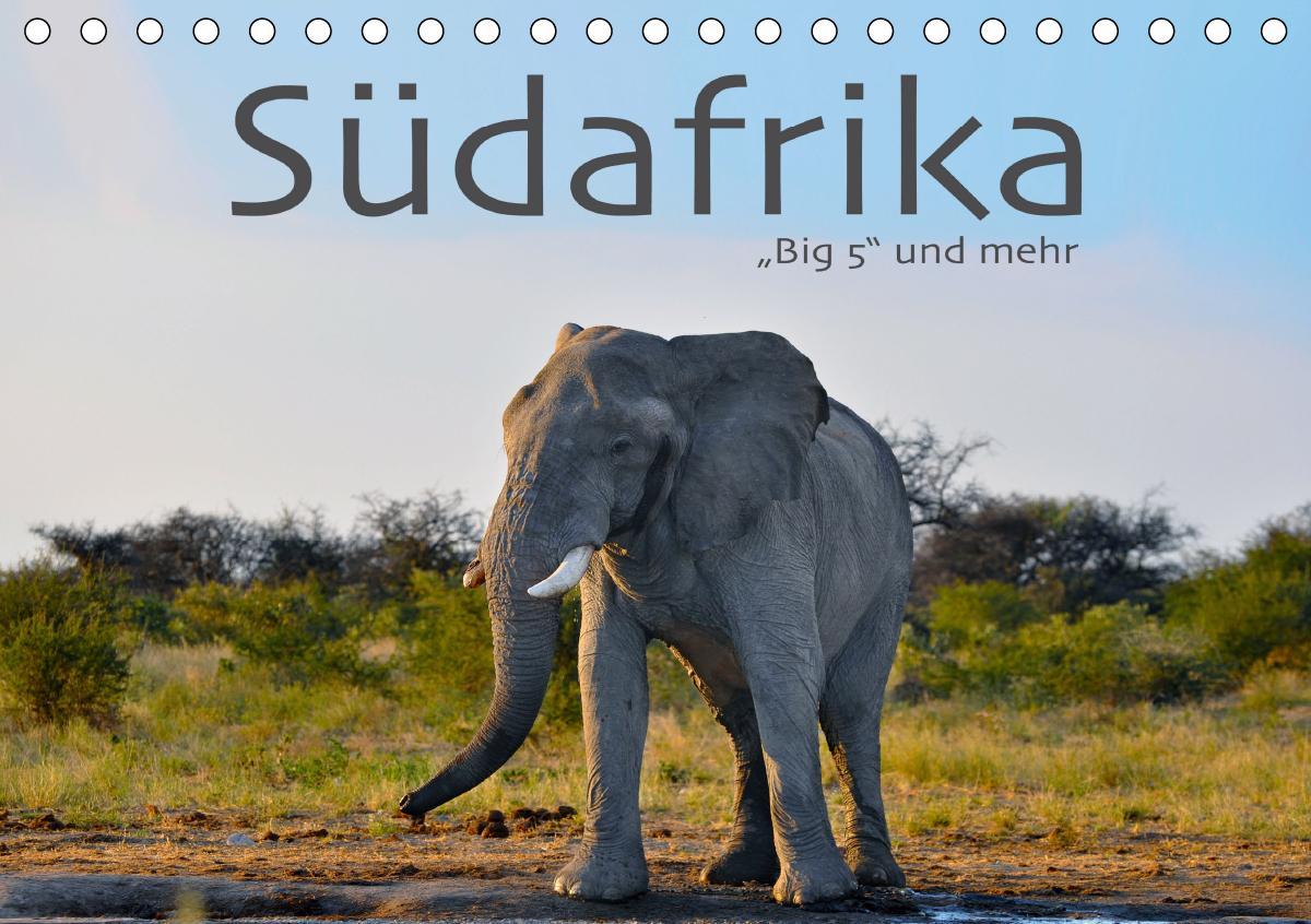 Südafrika - Big 5 und mehr (Tischkalender 2021 DIN A5 quer)