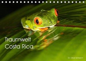 Traumwelt Costa Rica (Tischkalender 2021 DIN A5 quer)