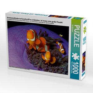 CALVENDO Puzzle Anemonenfische im Korallenriff zu entdecken, ist immer eine gro?e Freude! 1000 Teile Puzzle quer
