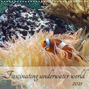 Fascinating underwater world (Wall Calendar 2021 300 × 300 mm Square)