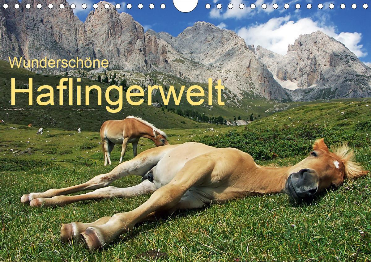 Wunderschöne Haflingerwelt (Wandkalender 2021 DIN A4 quer)
