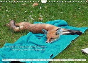 Freche Füchse - lustige Sprüche (Wandkalender 2022 DIN A4 quer)