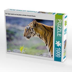 CALVENDO Puzzle Ein Tiger macht nur bei jedem zehnten Versuch Beute. 1000 Teile Lege-Größe 64 x 48 cm Foto-Puzzle Bild von Schütter Stefan