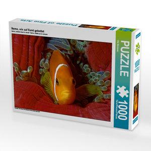 CALVENDO Puzzle Nemo, wie auf Samt gebettet 1000 Teile Puzzle quer