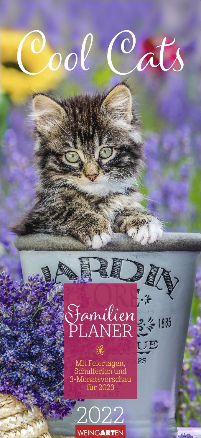 Cool Cats Familienplaner Kalender 2022