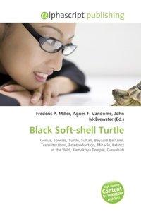 Black Soft-shell Turtle
