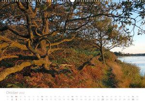 Zauberhafte Schlei (Wandkalender 2022 DIN A2 quer)