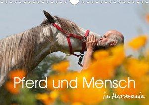 Pferd und Mensch in Harmonie (Wandkalender 2021 DIN A4 quer)