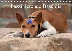 Faszinierende Basenjis (Tischkalender 2021 DIN A5 quer)