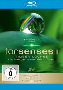 Forsenses II - Timber Lounge
