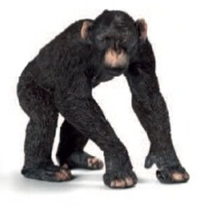 Schleich 14678 - Wild Life: Schimpansen-Männchen