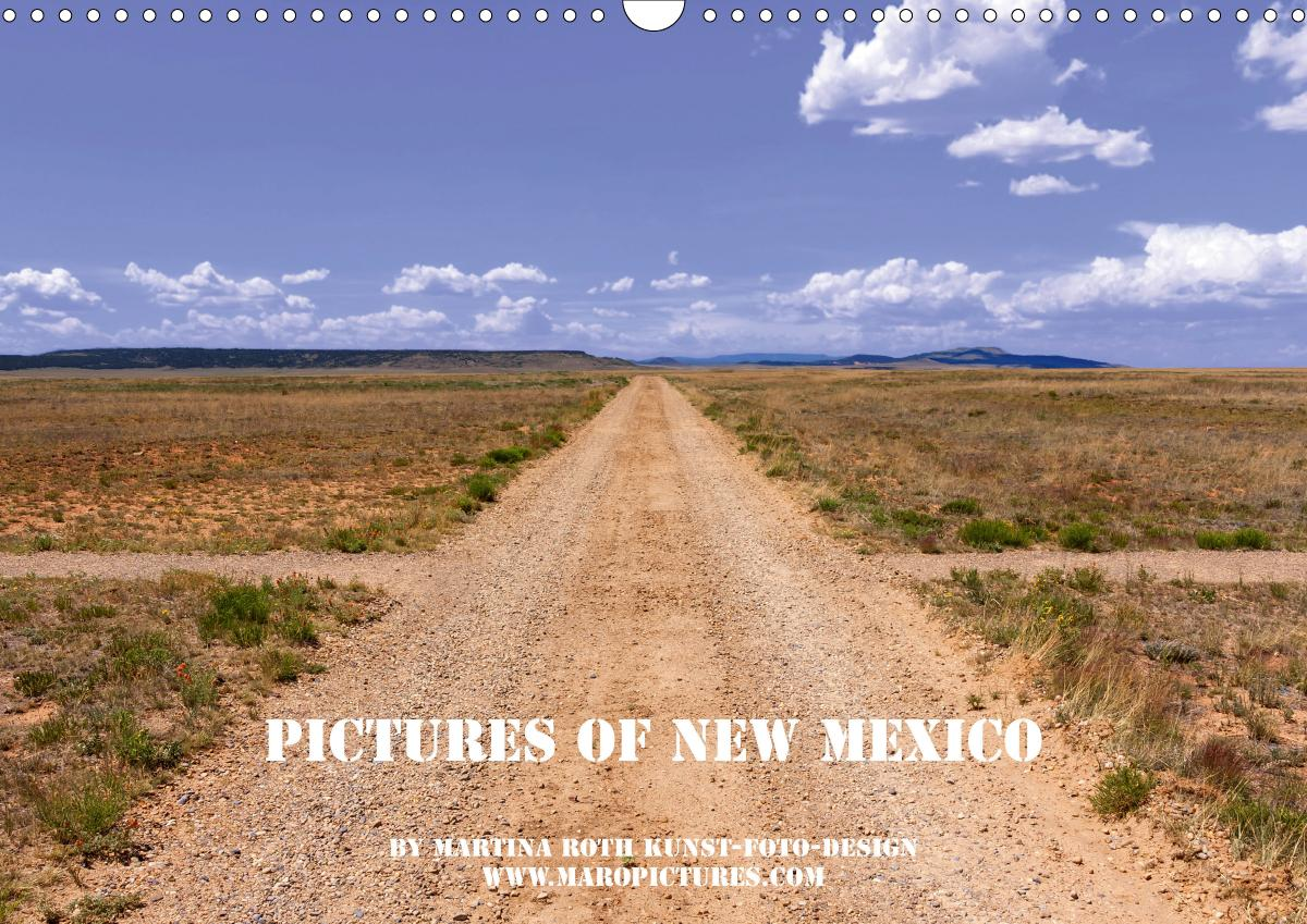 Pictures of New Mexico (Wandkalender 2021 DIN A3 quer)