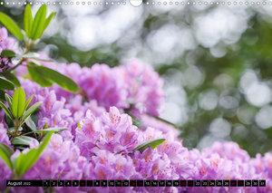 Rhododendren-Träume, Blüten, Romantik, Azaleen, Edel (Wandkalender 2022 DIN A3 quer)