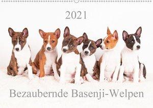 Bezaubernde Basenji-Welpen (Wandkalender 2021 DIN A2 quer)