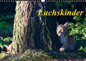 Luchskinder (Wandkalender 2021 DIN A3 quer)