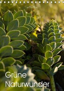 Grüne Naturwunder (Tischkalender 2021 DIN A5 hoch)