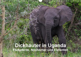 Dickhäuter in Uganda - Flußpferde, Nashörner und Elefanten (Wand
