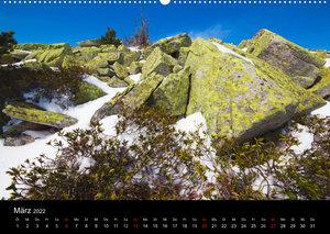 BERNER ALPEN - Natur und Landschaften (Wandkalender 2022 DIN A2 quer)
