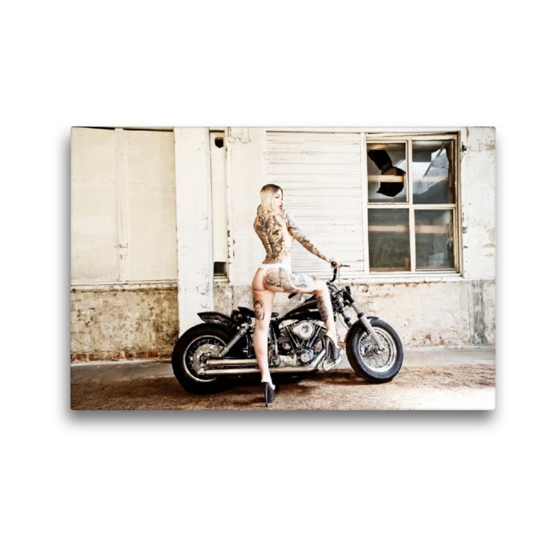 Premium Textil-Leinwand 45 cm x 30 cm quer Harley-Davidson Shove