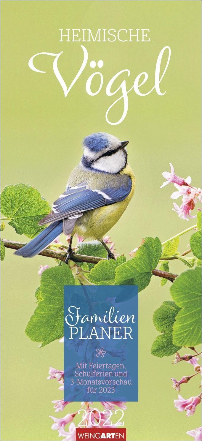Heimische Vögel Familienplaner Kalender 2022