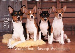 Wunderbare Basenji Welpenzeit (Wandkalender 2021 DIN A2 quer)