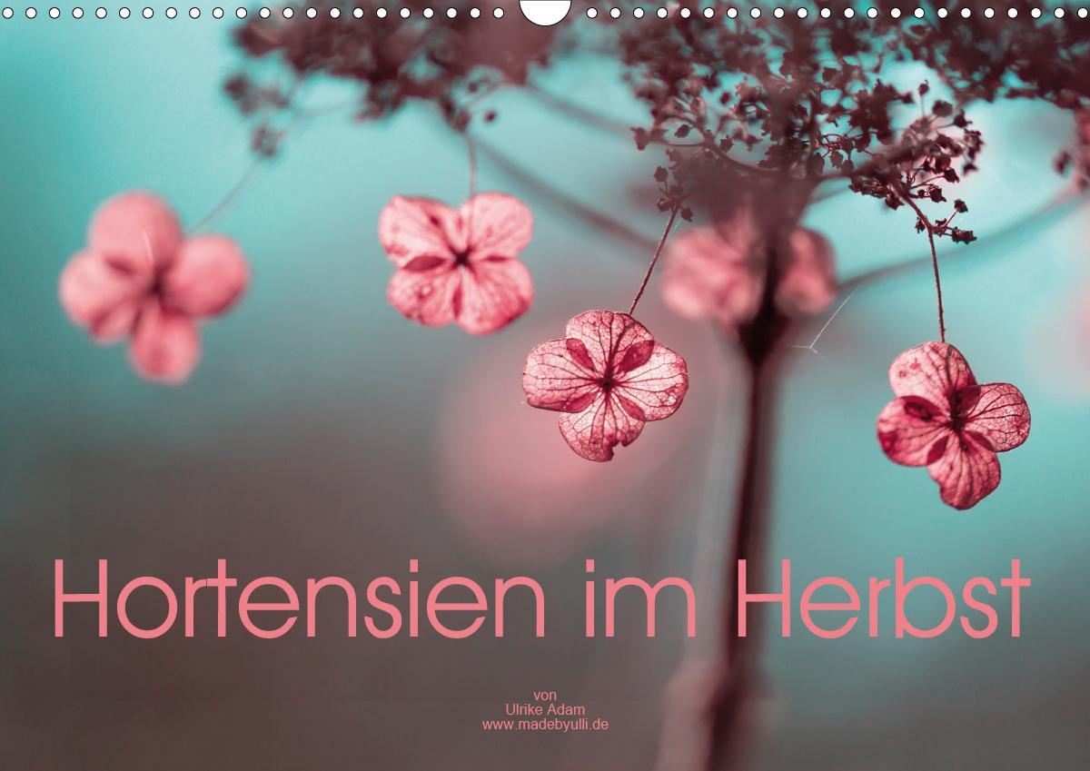 Hortensien im Herbst (Wandkalender 2021 DIN A3 quer)