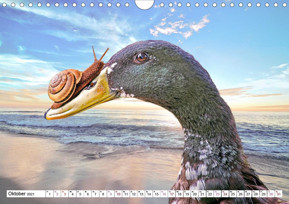 Echt schräg humorvolle Bildmontagen (Wandkalender 2021 DIN A4 qu