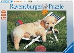 Golden Retriever. Puzzle 500 Teile