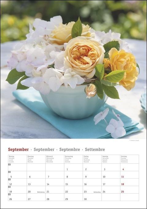 Rosenpracht Kalender 2022