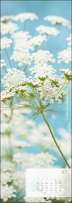 Magic Flowers Vertical Kalender 2022