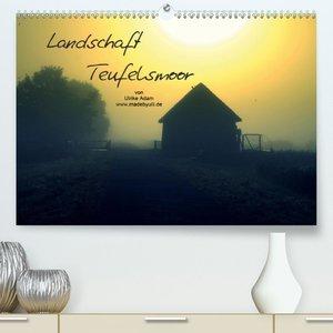 Landschaft Teufelsmoor / 2021 (Premium, hochwertiger DIN A2 Wand