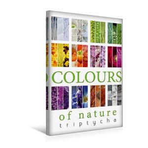 Premium Textil-Leinwand 30 cm x 45 cm hoch Colours of Nature - Triptycha