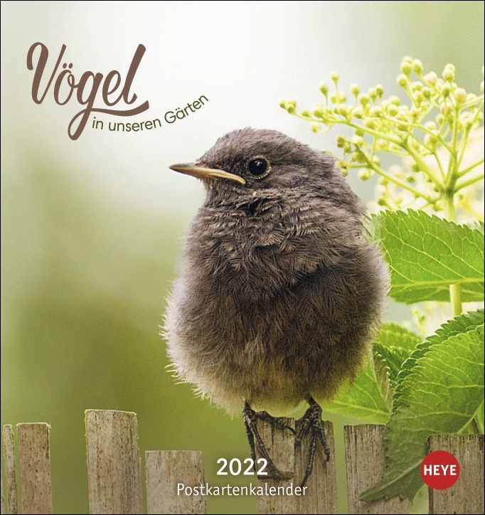 Vögel in unseren Gärten Postkartenkalender 2022