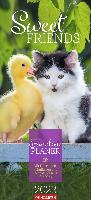 Sweet Friends Familienplaner Kalender 2022