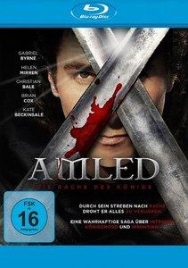 Amled - Die Rache des Königs