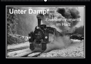 Unter Dampf - Eisenbahnromantik im Harz (Wandkalender 2021 DIN A