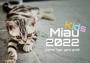Miau Kids - kleine Tiger ganz groß - Der Katzenkalender - 2022 - Kalender DIN A2