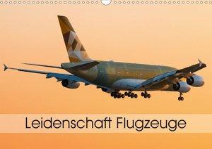 Leidenschaft Flugzeuge (Wandkalender 2021 DIN A3 quer)