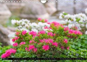 Rhododendren-Träume, Blüten, Romantik, Azaleen, Edel (Wandkalender 2022 DIN A4 quer)