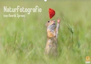 Naturfotografie (Wandkalender 2021 DIN A2 quer)