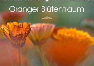 Oranger Blütentraum (Wandkalender 2021 DIN A2 quer)
