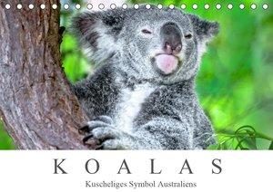 Koalas - Kuscheliges Symbol Australiens (Tischkalender 2021 DIN
